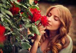 Woman Smelling Rose